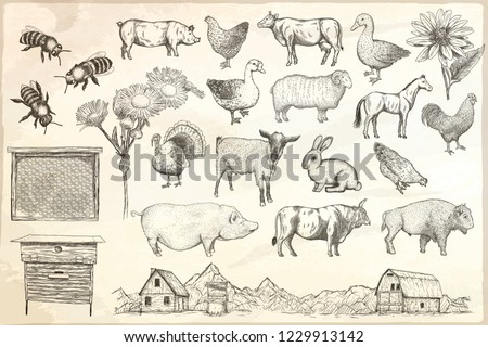 collection of farm animals on a