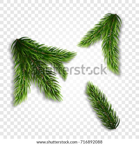 Shutterstock Collection of Fir Branches. Set of Realistic Detailed Christmas tree branches. Symbol of Christmas and New Year isolated on white background for your design. Vector illustration