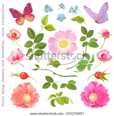 collection of floral elements