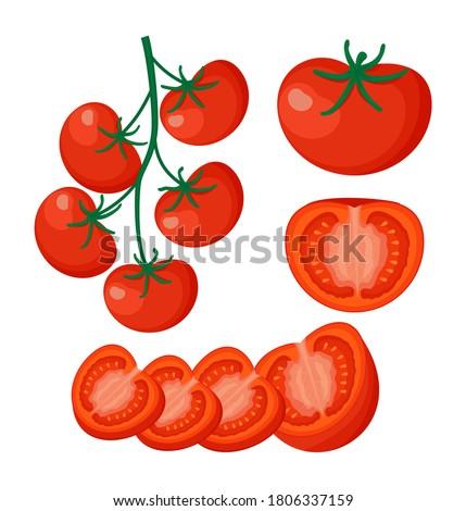Collection of fresh red tomato vector illustrations. Half a tomato, a slice of tomato, cherry tomato. EPS