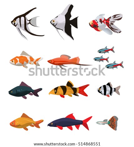 collection of freshwater fishes