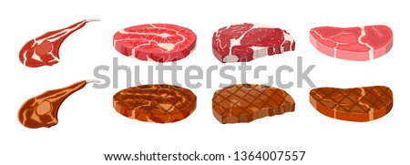 Collection of fried steaks. Beef tenderloin. Pork knuckle. Slice of steak, fresh meat. Uncooked pork chop. Vector illustration in flat style