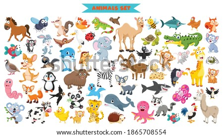Collection Of Funny Cartoon Animals stock photo
