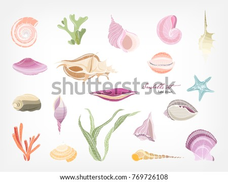 Collection of gorgeous hand drawn seashells, corals and seaweed isolated on white background. Bundle of shells of marine molluscs. Flora and fauna of sea and ocean. Colorful vector illustration.
