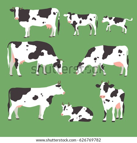 Collection of grazing cows with calves on green grass