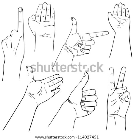 Collection of hands on different positions, outline illustration