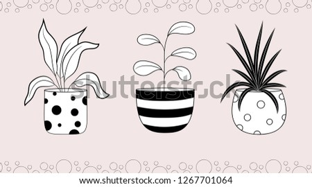 Collection of houseplants. Spathiphyllum ficus and dracaena in flowerpots. Vector illustration isolated on pink background