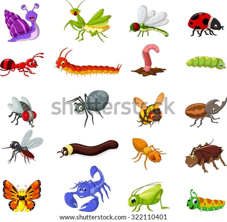 collection of insects cartoon