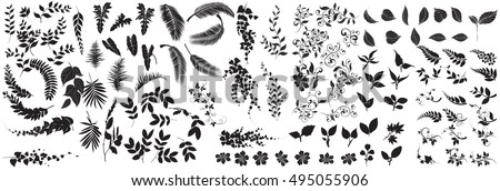 collection of  leaves,Line borders,collection of  leaves,Chalkboard Style Hand Drawn Laurels,Plants icons,Icons of leaves,Vector leaves icon set on white background,fern leaves,Leaves vector