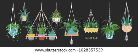 Collection of macrame hangers for potted plants. Set of hanging planters made of rope, elegant handmade home decorations isolated on black background. Cartoon flat colorful vector illustration.