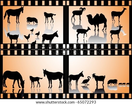 collection of many farm animals-silhouette in film strips