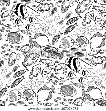 collection of  ocean fish drawn