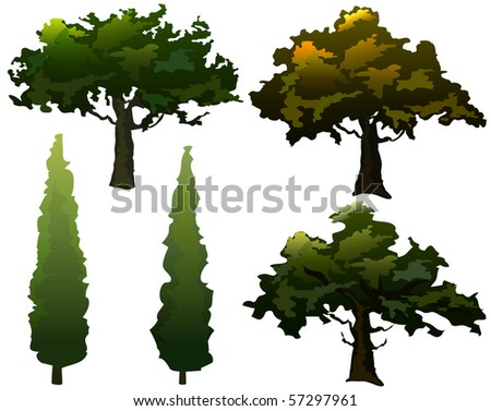 Collection of olive trees and cypress. Seasonal colors. Vector. - stock vector