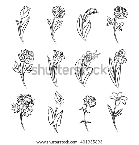 Collection of outlined flowers. Tulip, chamomile, lily of the valley, rose, peony, narcissus, orchid, iris, chrysanthemum, calla, carnation and lily In sketch hand drawn style. Vector illustration