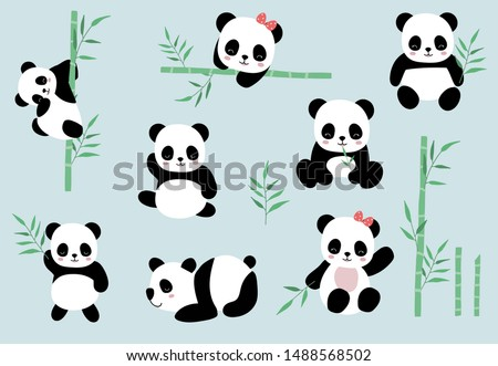 collection of panda object set