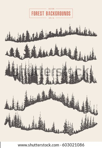 collection of pine forest