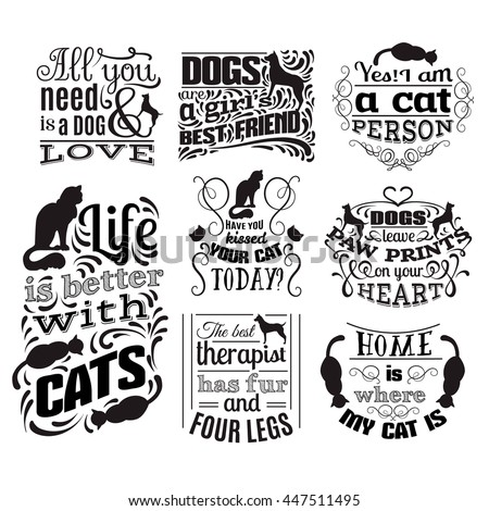 Cat Clothe Banner Pictures