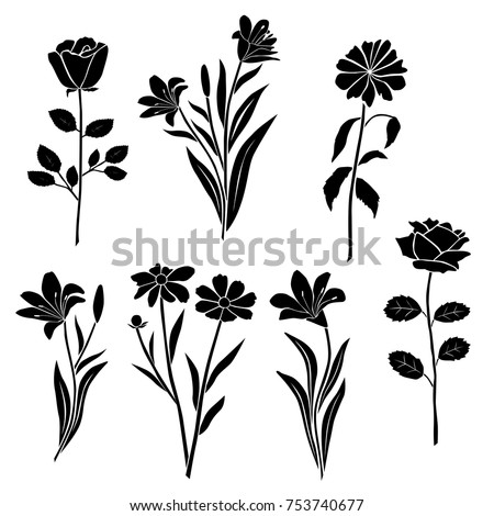 Collection of silhouettes of flowers rose, chamomile, chrysanthemum, Lily, different branches, blossom, vector, black color, isolated on white background