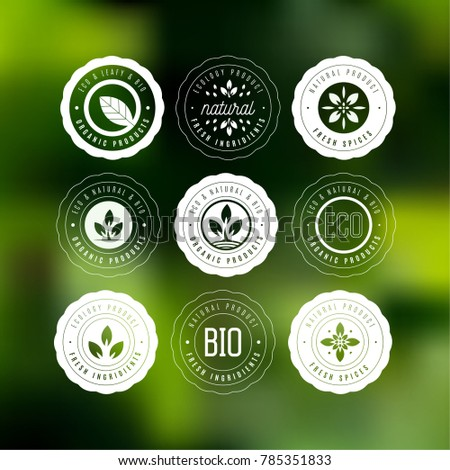 Collection of stickers and badges for natural products and eco food. Vector illustrations for ecolody ingredients, healthy food and products package.
