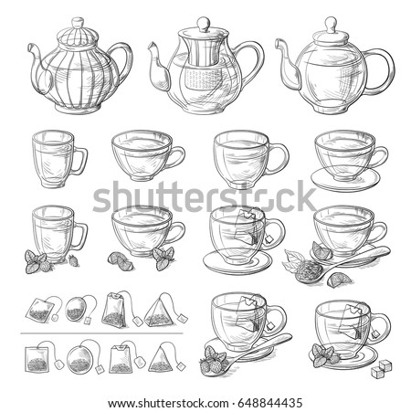 Collection of tea leaves and teapot. Green, black, Pekoe tea in graphic style, hand-drawn vector illustration