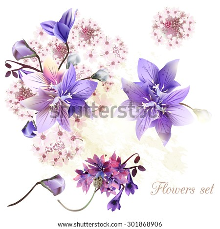 collection of tender flowers
