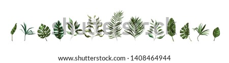 Collection of tropical greenery leaf plant herbs leaves monstera palm spring flora in watercolor style. Vector botanical decorative illustration for wedding invitation card save the date design