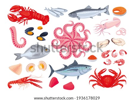 Collection of various seafood: fish, shellfish, crustaceans, octopus. Healthy fresh sea food. Sea creatures. Vector illustration, cartoon, icons, symbols, signs, stickers, poster, banner Photo stock ©