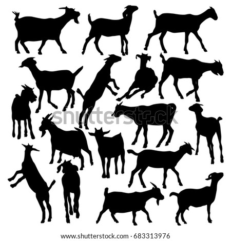 Collection of vector silhouettes of goats isolated on white background