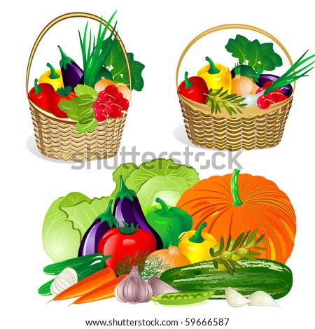 collection of vegetables in the basket