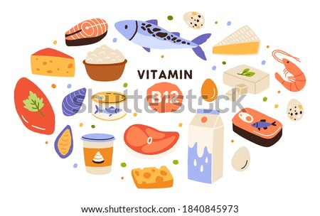 Collection of vitamin B12 food. Cottage cheese, eggs, sea food, fish, meat, dairy product. Dietetic products, organic natural nutrition. Flat vector cartoon illustration isolated on white background