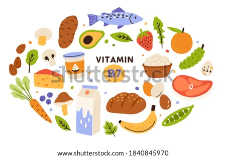 Collection of vitamin B7 source. Food containing biotin. Fish and meat, dairy products, fruits and vegetables. Dietetic organic nutrition. Flat vector cartoon illustration isolated on white background