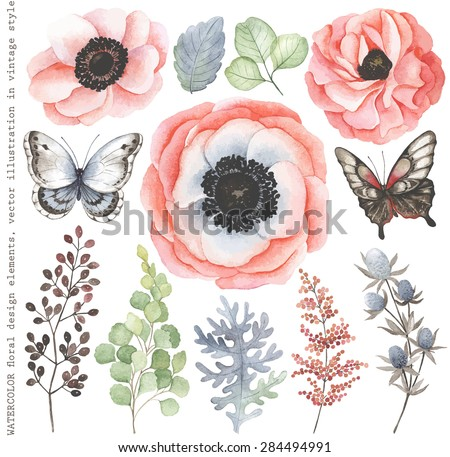 collection of watercolor floral