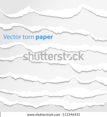 collection of white torn paper