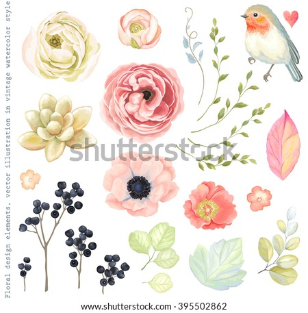 collection vector flowers
