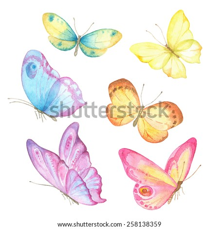 collection watercolor of flying
