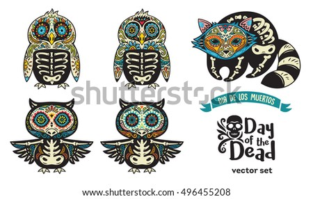 collection with sugar skull