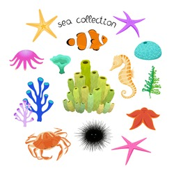 Collection with underwater animals on white background. Vector hand drawn illustration with sea creatures.