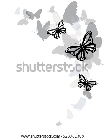 color butterflies isolated on a