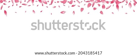 color cherry petal vector