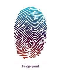 Color fingerprint symbol shape.Fingerprint. Abstract vector fingerprint icon Biometric security sign. Cyber security concept. Interface button