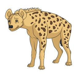 Color illustration with african spotted hyena. Isolated vector object on a white background.