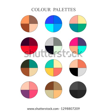 Color palette, color schemes, warm colors, cool colors, spectrum. Flat design, vector illustration, vector.