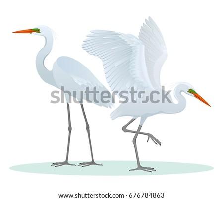 color set  illustration with