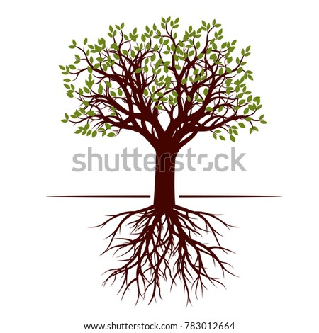 Color shape of Tree with Leaves. Vector Illustration.