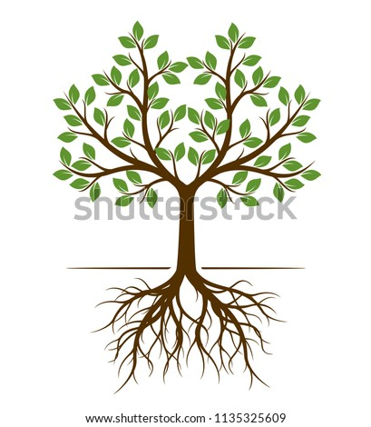 Color shape of Tree with Roots. Vector Illustration. Plant in garden.