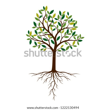 Color Tree and Roots. Vector Illustration. Plant and Garden.