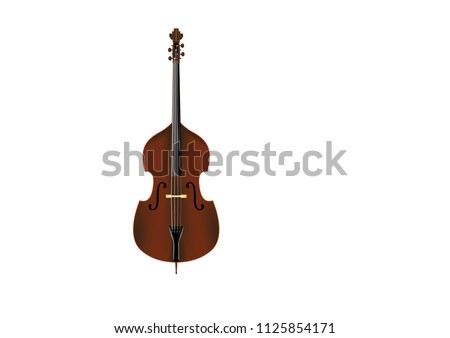 Color vector illustration of a double bass with many details.