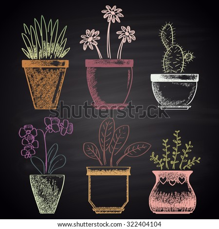 Colored chalk drawn set with different types of flowerpots (cactus, aloe, ficus, orchid, rosemary, chamomile). House theme.