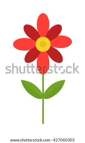colored cosmos flowers isolated