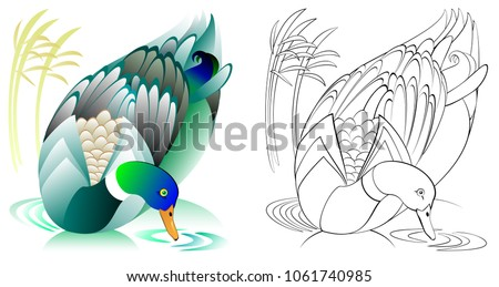 Coloring template with little duck - Download Free Vector Art, Stock ...